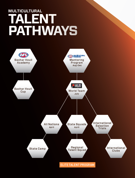 Multicultural Talent Pathway