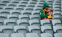 fan-alone